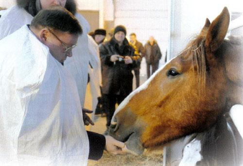 Коньков и лошадь